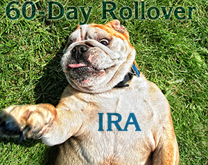 IRA Rollover VEBCPA.com